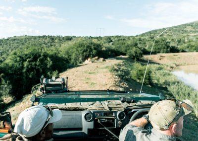 Kwandwe Game Reserve