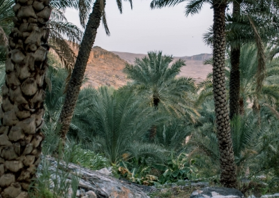 20180905 Misfat Al Abreyeen DSC01156
