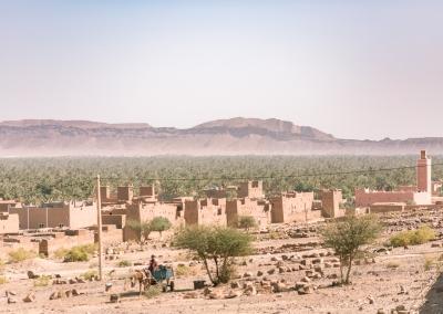 Road Trip To Sahara